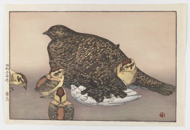 Yoshida Toshi (Japanese, born 1911). Raicho (Hen with Four Chicks), 1930. Print, Sheet: 10 3/4 x 16 in. (27.3 x 40.6 cm). Brooklyn Museum, Gift of the Estate of Dr. Eleanor Z. Wallace, 2007.32.135. © Estate of Yoshida Toshi