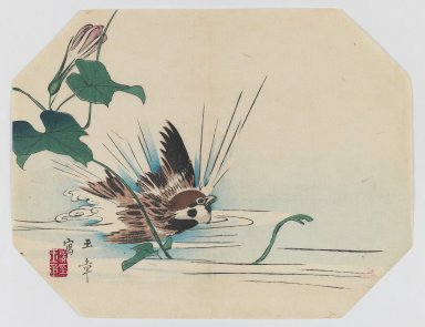 Kawabata Gyokusho (Japanese, 1842-1913). Sparrow with Morning Glory Flower, ca. 1890. Woodblock color print, 8 3/4 x 11 3/8 in. (22.2 x 28.9 cm). Brooklyn Museum, Gift of the Estate of Dr. Eleanor Z. Wallace, 2007.32.17