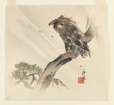 Kogyo Terazaki (Japanese, 1866-1919). Eagle on a Branch in the Wind, ca. 1890-1895. Woodblock color print, 9 3/8 x 10 in. (23.8 x 25.4 cm). Brooklyn Museum, Gift of the Estate of Dr. Eleanor Z. Wallace, 2007.32.22