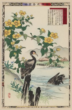 Brooklyn Museum: Cormorant