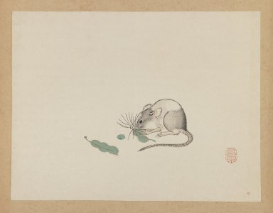 Mochizuki Gyokusen (Japanese, 1794-1852). Mouse Eating Pea Pods, ca. 1850. Woodblock color print, 9 1/2 x 12 7/16 in. (24.1 x 31.6 cm). Brooklyn Museum, Gift of the Estate of Dr. Eleanor Z. Wallace, 2007.32.37