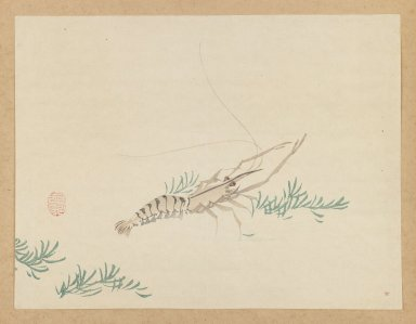 Mochizuki Gyokusen (Japanese, 1794-1852). Crayfish, ca. 1850. Woodblock color print, Other: 9 1/2 x 12 7/8 in. (24.1 x 32.7 cm). Brooklyn Museum, Gift of the Estate of Dr. Eleanor Z. Wallace, 2007.32.38