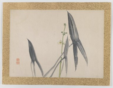 Nishiyama Hoen (Japanese, 1804-1867). [Untitled] (Flower Subject), 1855. Woodblock color print, 10 3/4 x 15 in. (27.3 x 38.1 cm). Brooklyn Museum, Gift of the Estate of Dr. Eleanor Z. Wallace, 2007.32.43