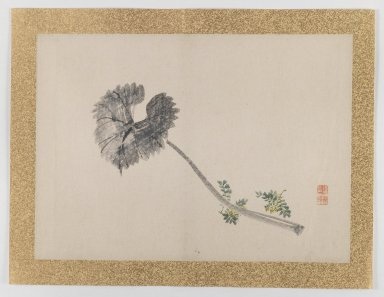 Nishiyama Hoen (Japanese, 1804-1867). [Untitled] Single Leaf and Small Yellow Flowers), 1855. Ink and light color on paper, 10 3/4 x 14 15/16 in. (27.3 x 37.9 cm). Brooklyn Museum, Gift of the Estate of Dr. Eleanor Z. Wallace, 2007.32.45