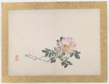 Nishiyama Hoen (Japanese, 1804-1867). [Untitled] (Pink Rose), 1855. Ink and light color on paper, 10 3/4 x 14 15/16 in. (27.3 x 37.9 cm). Brooklyn Museum, Gift of the Estate of Dr. Eleanor Z. Wallace, 2007.32.49