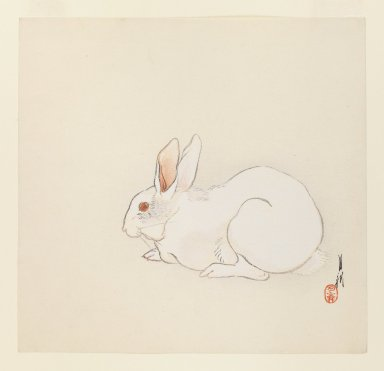 Ogata Gekko (Japanese, 1859-1920). White Rabbit, ca. 1890-1910. Woodblock color print, 9 1/2 x 9 7/8 in. (24.1 x 25.1 cm). Brooklyn Museum, Gift of the Estate of Dr. Eleanor Z. Wallace, 2007.32.59