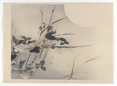 Ogata Gekko (Japanese, 1859-1920). Moon and Foliage [Album page from a Bird and Flower (Kacho) Book], ca. 1890-1900. Woodblock color print with silver pigment, 10 1/4 x 13 7/8 in. (26 x 35.2 cm). Brooklyn Museum, Gift of the Estate of Dr. Eleanor Z. Wallace, 2007.32.79