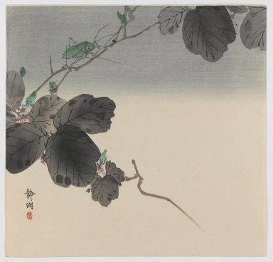 Okuhara Seiko (Japanese, 1837-1913). Vine with Green Grasshopper, ca. 1910. Woodblock color print, 9 1/4 x 9 9/16 in. (23.5 x 24.3 cm). Brooklyn Museum, Gift of the Estate of Dr. Eleanor Z. Wallace, 2007.32.88