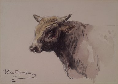 Rosa Bonheur (French, 1822-1899). Head of a Bull, n.d. Watercolor and graphite on cream wove paper, 4 15/16 x 6 7/8 in. (12.5 x 17.5 cm). Brooklyn Museum, Gift of John Hill Morgan, 22.80