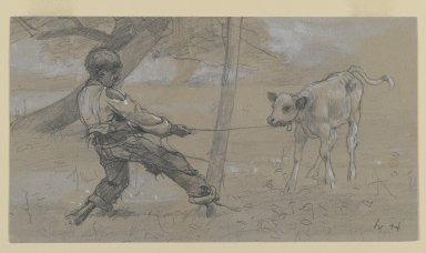 "Winslow Homer (American, 1836-1910). Study for ""The Unruly Calf,"" ca. 1875. Graphite and white opaque watercolor on blue-grey, moderately thick, moderately textured wove paper, Sheet: 4 11/16 x 8 1/2 in. (11.9 x 21.6 cm). Brooklyn Museum, Museum Collection Fund, 24.241"