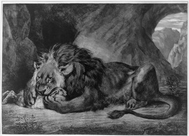 Eugène Delacroix (French, 1798-1863). Lion de l'Atlas, 1829. Lithograph on wove paper, Image: 12 15/16 x 18 1/16 in. (32.8 x 45.8 cm). Brooklyn Museum, Gift of Frank L. Babbott, 25.136