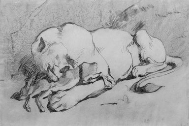 Eugène Delacroix (French, 1798-1863). Lioness Devouring a Rabbit. Pen and ink with reddish wash on paper, 9 x 14 1/8 in. (22.9 x 35.8 cm). Brooklyn Museum, Carll H. de Silver Fund, 26.59