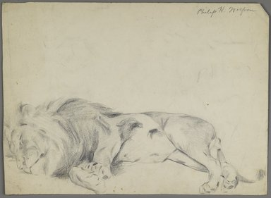 Philip H. Wolfrom (American, 1870-1904). Sleeping Lion, n.d. Graphite on paper, Sheet: 10 3/8 x 14 1/8 in. (26.4 x 35.9 cm). Brooklyn Museum, Gift of Anna Wolfrom Dove, 27.823