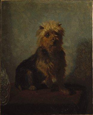 Abbott H. Thayer (American, 1849-1921). Chadwick's Dog, 1874. Oil on canvas, 20 1/2 x 16 9/16 in. (52 x 42 cm). Brooklyn Museum, Gift of Mrs. John White Chadwick, 29.62