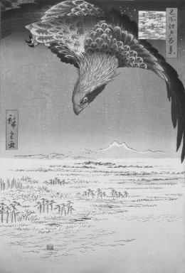 Utagawa Hiroshige (Ando) (Japanese, 1797-1858). Fukagawa Susaki and Jumantsubo, No. 107 from One Hundred Famous Views of Edo, 5th month of 1857. Woodblock print, Sheet: 14 3/16 x 9 1/4 in. (36 x 23.5 cm). Brooklyn Museum, Gift of Anna Ferris, 30.1478.107