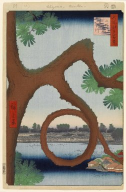 Utagawa Hiroshige (Ando) (Japanese, 1797-1858). Moon Pine, Ueno, No. 89 from One Hundred Famous Views of Edo, 7th month of 1856. Woodblock print, sheet:  14 3/16 x 9 1/4 in.  (36.0 x 23.5 cm);. Brooklyn Museum, Gift of Anna Ferris, 30.1478.89