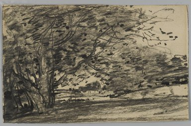 Joseph Frank Currier (American, 1843-1909). Study of Trees, ca. 1880. Charcoal on paper, sheet: 4 3/8 x 6 15/16 in. (11.1 x 17.6 cm). Brooklyn Museum, Gift of Mrs. John White Alexander, 31.202.1