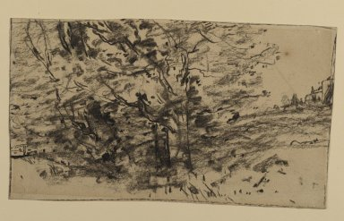 Joseph Frank Currier (American, 1843-1909). Study of Trees, ca. 1880. Charcoal on wove paper, sheet: 4 3/16 x 7 3/8 in. (10.6 x 18.7 cm). Brooklyn Museum, Gift of Mrs. John White Alexander, 31.202.2