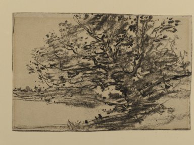 Joseph Frank Currier (American, 1843-1909). Study of Trees, ca. 1880. Charcoal on cream, medium weight, sightly textured laid paper, sheet: 4 5/8 x 6 5/16 in. (11.7 x 16 cm). Brooklyn Museum, Gift of Mrs. John White Alexander, 31.202.3