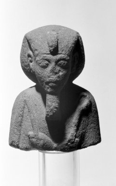 Brooklyn Museum: Head of a Shabti of King Akhenaten