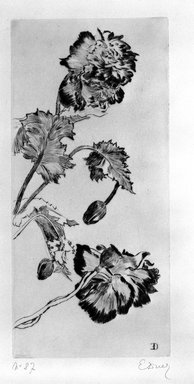 Ernest-Ange Duez (French, 1843-1896). Fleurs, 1894. Drypoint on laid paper, 16 x 7 1/2 in. (40.6 x 19 cm). Brooklyn Museum, Charles Stewart Smith Memorial Fund, 38.376