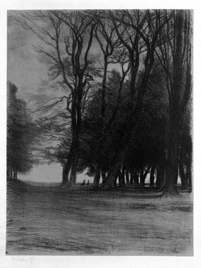 Charles-Marie Dulac (French, 1865-1898). Bouquet d'arbres, 1894. Lithograph on thin paper laid down, 18 11/16 x 14 3/16 in. (47.4 x 36.1 cm). Brooklyn Museum, Charles Stewart Smith Memorial Fund, 38.405