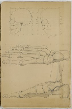 Eastman Johnson (American, 1824-1906). Anatomy Sketchbook, 1849. Graphite on beige, medium weight, slightly textured laid paper, Sketchbook: 17 1/8 x 11 1/16 x 3/8 in. (43.5 x 28.1 x 1 cm). Brooklyn Museum, Gift of Albert Duveen, 40.61