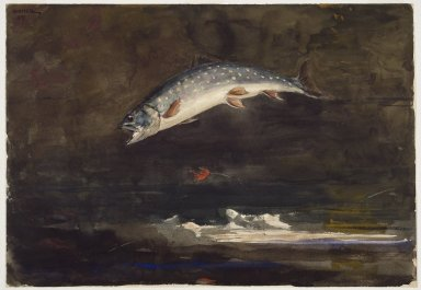 Winslow Homer (American, 1836-1910). Jumping Trout, 1889. Watercolor over graphite on cream, medium-weight, moderately textured wove paper, 13 15/16 x 19 15/16 in. (35.4 x 50.6 cm). Brooklyn Museum, Dick S. Ramsay Fund, 41.220