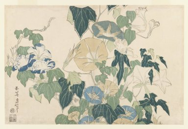 Katsushika Hokusai (Japanese, 1760-1849). Morning Glories in Flowers and Buds, ca. 1830. Woodblock color print, 9 3/4 x 14 11/16 in. (24.8 x 37.3 cm). Brooklyn Museum, Frank L. Babbott Fund, 41.603