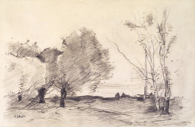 Jean-Baptiste-Camille Corot (French, 1796-1875). Willows and White Poplars (Saules et peupliers blancs), 1865-1872. Crayon and pencil on wove paper, 9 7/8 x 15 in. (25.1 x 38.1 cm). Brooklyn Museum, Henry L. Batterman Fund, 42.227