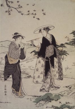 Brooklyn Museum: Cherry Blossom Viewing Outing