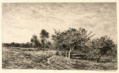 Charles-François Daubigny (French, 1817-1878). Apple Trees at Auvers (Pommiers à Auvers), 1877. Etching on heavy laid paper, Sheet: 13 1/4 x 20 1/8 in. (33.7 x 51.1 cm). Brooklyn Museum, Gift of J. Oettinger, 43.117.4