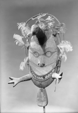 Brooklyn Museum: Mask of a Valley Ptarmigan