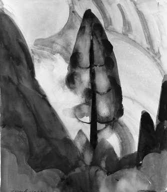 William Zorach (American, born Lithuania, 1887-1966). Tree - Yosemite, 1920. Watercolor over graphite on white, moderately thick, moderately to rough textured wove paper mounted to woodpulp board, Paper: 15 1/4 x 13 1/8 in. (38.7 x 33.3 cm). Brooklyn Museum, Gift of Ettie Stettheimer, 45.123