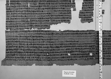 Snakebite Papyrus, 664-332 B.C.E. Papyrus, ink, a: Glass: 15 13/16 x 27 5/8 in. (40.2 x 70.2 cm). Brooklyn Museum, Bequest of Theodora Wilbour from the collection of her father, Charles Edwin Wilbour, 47.218.48a-f