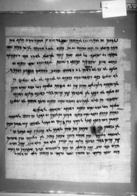 Brooklyn Museum: Freedom for Tamut and Yehoishema