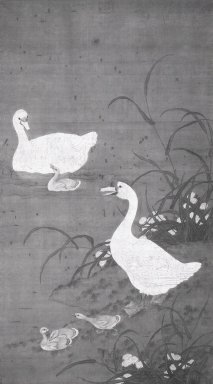 One Chinese Painting of Ducks, 1368-1644. Watercolor and ink on silk, 81 7/8 x 48 1/4 in. (208 x 122.5 cm). Brooklyn Museum, 48.190