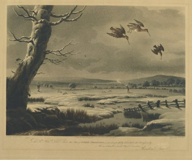 Nichols and Bluck. Snipe Shooting. Engraving Brooklyn Museum, Gift of Harry W. Havemeyer, 54.34.12