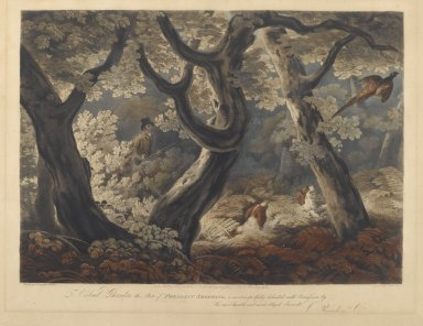 Nichols and Lewis. Pheasant Shooting. Engraving Brooklyn Museum, Gift of Harry W. Havemeyer, 54.34.2