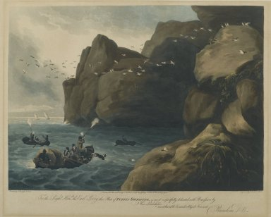 Brooklyn Museum: Puffin Shooting
