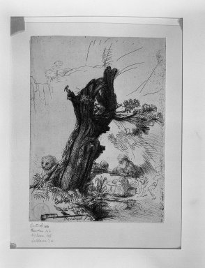 Rembrandt Harmensz. van Rijn (Dutch, 1606-1669). Saint Jerome Beside a Pollard Willow, 1648. Etching and drypoint on laid paper, Plate: 7 3/16 x 5 1/4 in. (18.3 x 13.3 cm). Brooklyn Museum, Gift of Mrs. Horace O. Havemeyer, 54.35.10