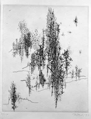 Gabor Peterdi (American, born Hungary, 1915-2001). Wild Flowers, 1955. Etching and engraving on paper, sheet: 11 5/8 x 8 3/4 in. (29.5 x 22.2 cm). Brooklyn Museum, Dick S. Ramsay Fund, 55.160.1. © Estate of Gabor Peterdi