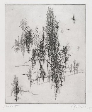 Gabor Peterdi (American, born Hungary, 1915-2001). Wild Flowers, 1955. Etching and engraving on paper, sheet (State I): 13 x 8 3/4 in. (33 x 22.2 cm). Brooklyn Museum, Gift of the artist, 55.213.2. © Estate of Gabor Peterdi