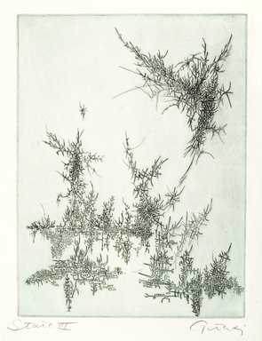 Gabor Peterdi (American, born Hungary, 1915-2001). Cascade, 1955. Engraving and etching on paper, sheet: 15 1/4 x 11 1/2 in. (38.7 x 29.2 cm). Brooklyn Museum, Gift of the artist, 55.213.3. © Estate of Gabor Peterdi