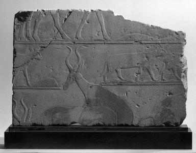 Brooklyn Museum: Relief with Desert Animals