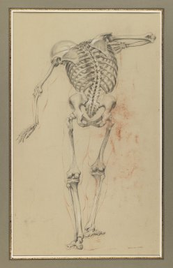 Daniel Huntington (American, 1816-1906). Skeleton Study, ca. 1848. Black and red crayon and white chalk on beige, medium-weight, slightly textured wove paper, Sheet: 20 3/16 x 10 3/8 in. (51.3 x 26.4 cm). Brooklyn Museum, Gift of The Roebling Society, 68.167.3