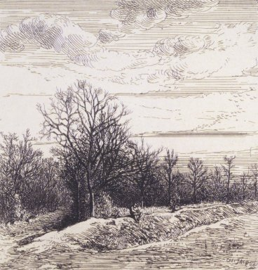 Charles-Émile Jacque (French, 1813-1894). [Untitled] (Landscape). Etching with Chine collé, 16 13/16 x 12 3/16 in. (42.7 x 31 cm). Brooklyn Museum, Gift of Mrs. Edwin De T. Bechtel, 68.192.22