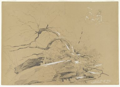 David Johnson (American, 1827-1908). Catskills, August 1873. Graphite and white opaque highlights on gray/brown, moderately thick, smooth wove paper, Sheet: 10 x 14 in. (25.4 x 35.6 cm). Brooklyn Museum, Dick S. Ramsay Fund, 69.60