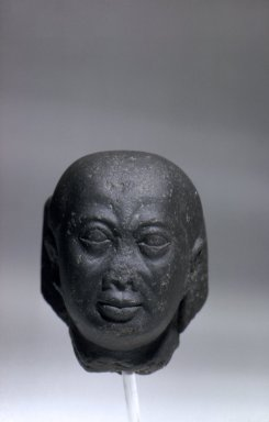 Brooklyn Museum: Male Head with Recut Face
