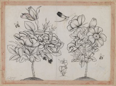 Shafi' Abbasi. Rosebushes, Bees, and a Dragonfly, AH 1079 /1668-1669 CE. Ink on paper, Page: 8 7/8 x 6 9/16 in. (22.5 x 16.6 cm). Brooklyn Museum, Gift of Mr. and Mrs. Charles K. Wilkinson, 72.26.14